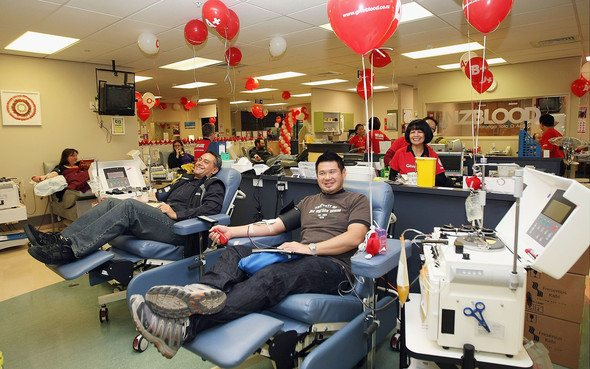 Blood donors in New Zealand